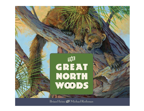 Image result for the great north woods book brian heinz